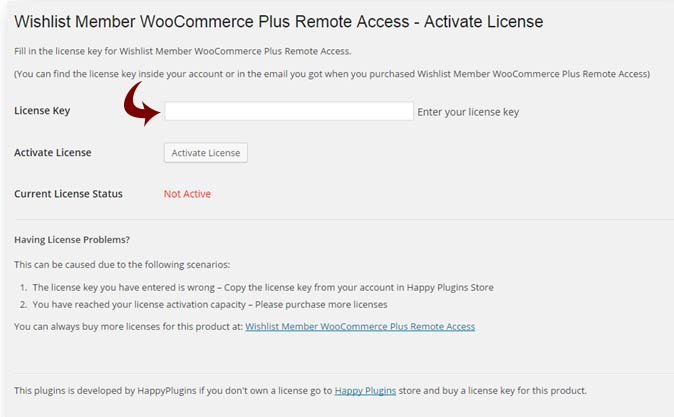Remote Access Add-On License Activation